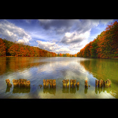 Leaves whisper the sound of Autumn (Dimitri Depaepe) Tags: park wood autumn trees lake reflection water colors leaves clouds bravo belgium belgie tervuren bec hdr firstquality vosplusbellesphotos