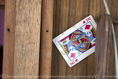 CRW_2516 (mynameismoe) Tags: birthday wood home geotagged cards boat sailing stuck canon300d availablelight september card sail princeedwardisland 29 2008 pei charlottetown kingofdiamonds