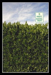 Sky High Sign (G-daddyArt) Tags: sign parking 10 minute hedge sky teal blue white green cloud