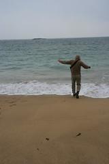 Sand Beach in Acadia