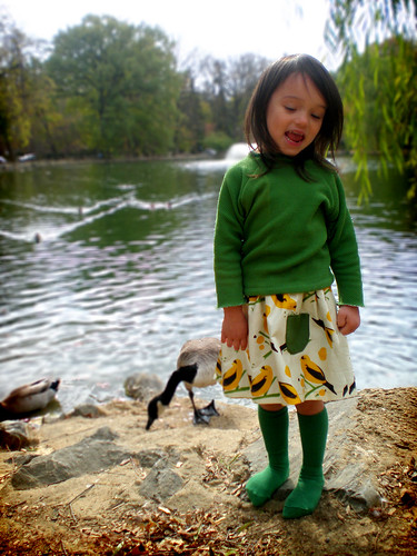 reversible bird seed skirt
