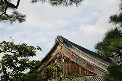 IMG_4828 (SouthTexDoc) Tags: palace nijo
