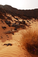 DSC_8226 (madjid) Tags: sahara algeria desert   djanet