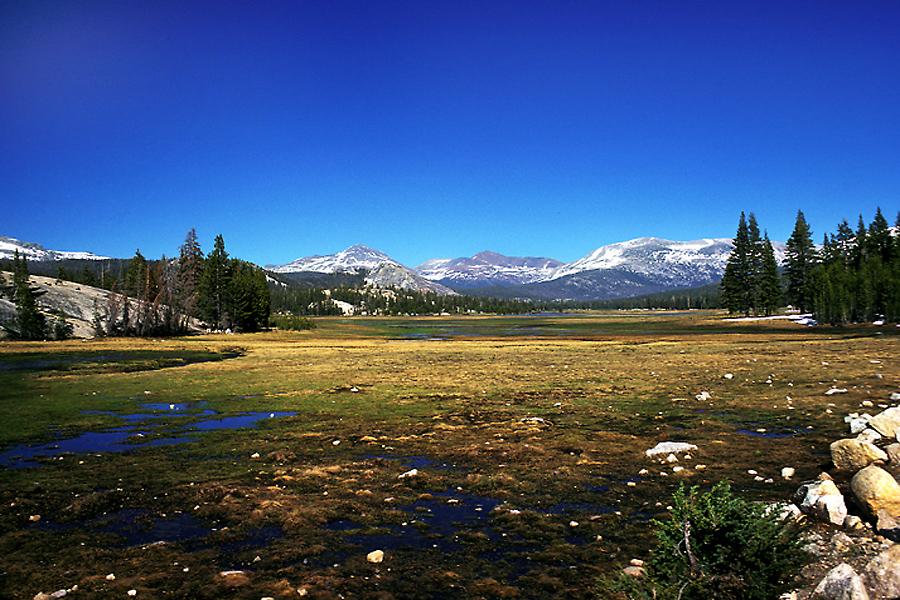 Tuolomne Meadows Spring - Yosemite