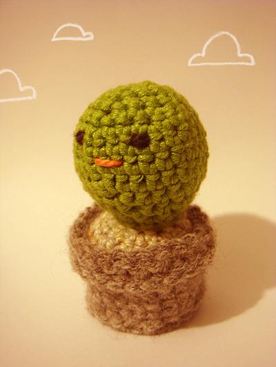 Hello Cactus #2