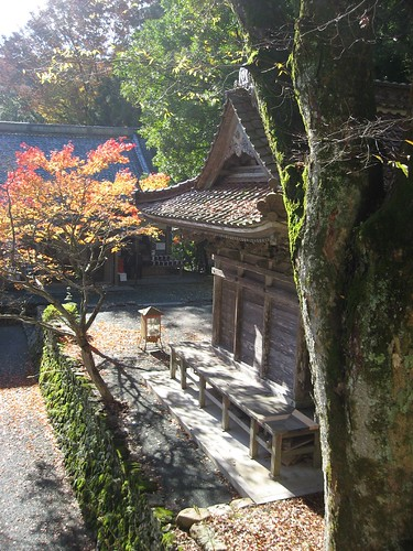 Autumn in the temple-16