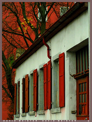 All In Red (_David_Meister_) Tags: door red urban white house colour tree rot contrast haus stadt portal colourful kontrast farbe baum tr weis farbenfroh stdtisch aplusphoto goldstaraward colorsinourworld
