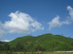 Munnar - Kerela