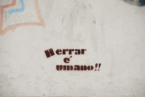 Barcelos 104