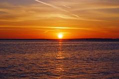 Starting of a Brand New Day DSC_1014 (Vickyeastwood) Tags: ocean morning sea beach sunrise jetty redsea egypt sharmelsheikh explorewinnersoftheworld ltigrandazure naqbbay naqb grandazure holidayinfinity