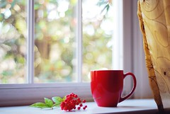 'tis the season (*Peanut (Lauren)) Tags: light red coffee still bokeh windowseat thisisstunning sighwork youaremywonderfulfriend