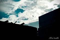 شمس غربت ضآعت بۈسط آلڪۈن (دنيآ ۈقفت) صبحي غدى مثل آلحزن باللۈن (★Ᾰΐΐα-7αseβκ) Tags: sky sun clouds