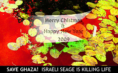 NewYear_Ghaza-Palestine (Mokhaled) Tags: life red color digital photography death blood holidays colorful kill seasons image massacre palestine flag year manipulations stop card passion 2009 gaza happynewyear greatings ghaza merrychistmas passionphotography theunforgettablepictures awardtree seage