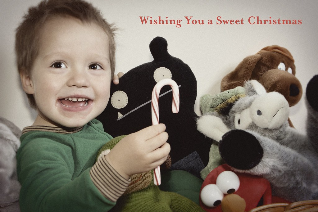 Christmas Card Photoshoot