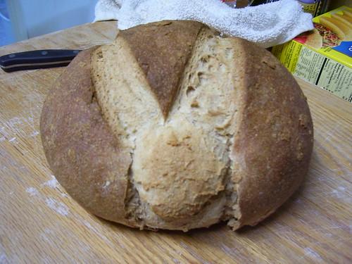 Hard Crust Loaf