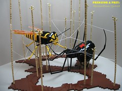 aposematism 1 (Ryan Rubino) Tags: sculpture spider model wasp lego prey blackwidow predator yellowjacket vespula vespulavulgaris latrodectushesperus aposematism