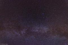 Milky Way (focused on Cygnus) n2 (AstroGuiGeek) Tags: sky stars space ciel nebula starry cygne toiles starrynight t3i milkyway cygnus northamericanebula voielacte ngc7000 northamericannebula 600d canonphotography starrysky toil cieltoil cieldenuit eos600d canoneos600d