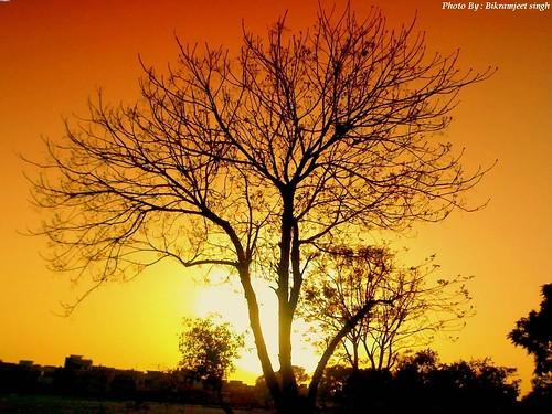 Sunset Sky background nature wallpaper