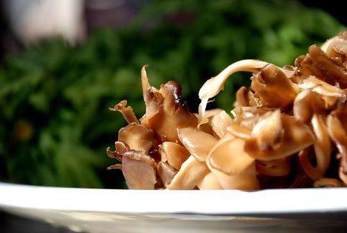 maitake mushroom + chyrsanthemum leaves