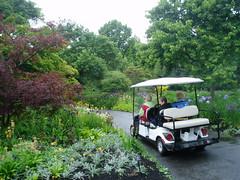 Cart Ride to Perennial Gardens