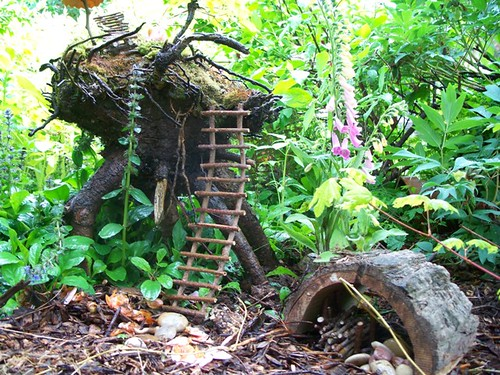 fairy ladder and woodshed