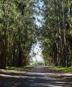 La-Cienega-entrance