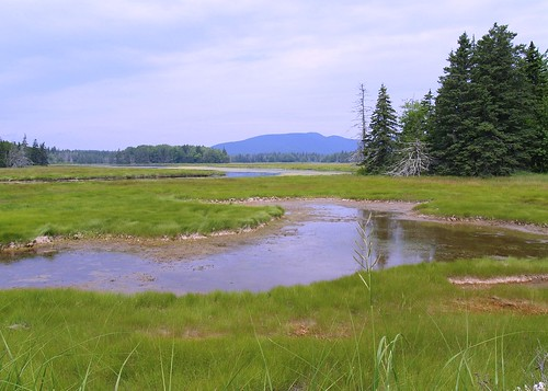 Ohhhh, Maine