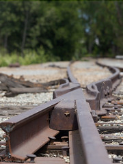 Rail switch (Focal Intent) Tags: railroad abandoned leaf rail railway hasselblad rails alameda 150mm leafaptus17