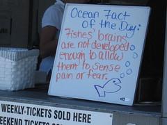 O.G. (jenofur) Tags: beach vegan oceangrove fishfact