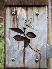Leaf Stencil (KAPOWE!) Tags: lorne