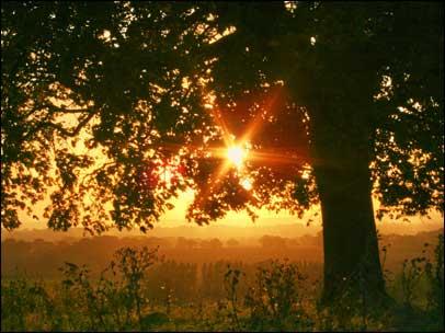 sunrise_01_406x304.jpg