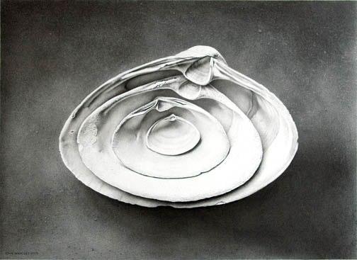 John Whalley, Refuge, 2005