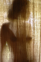 Caché (AndrewNZ) Tags: bali woman silhouette topv111 wow indonesia topv555 topv333 femme topv444 topv222 sensual hidden topv777 topv666 revealing ubud topv888 caché cminhiding