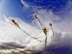 Urbino - Festa degli Aquiloni 2008 (Piero Gentili) Tags: kite kites soe piero aquiloni gentili supershot abigfave platinumphoto goldstaraward rubyphotographer piero20051 pierogentili gentilipiero pierpaologentili festadegliaquiloniurbino