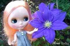 Rosie and flower (6060eyes) Tags: doll rosie blythe mrb mademoisellerosebud