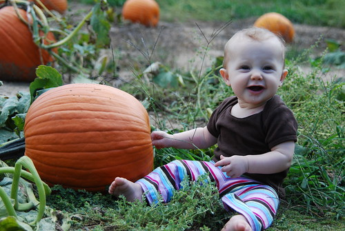 Adeline and the Pumpkin