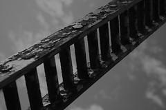 Leiter zum Himmel (fuev001) Tags: portrait people flower computer boot sonnenuntergang finger herbst rad kirche himmel blumen mais oldpeople landschaft sonne mauer lcheln leiter sonnenblume tren tre fisherboat fischerboot regentropfen alteshaus siel altefrau klapotetz koralpe altemenschen steinhaus kolben maiskolpen