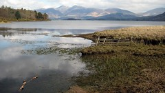 Derwentwater, looking north (mcgin's dad) Tags: searchthebest lakedistrict cumbria derwentwater canondigitalixus70 platinumheartaward