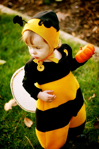 {P} the bee!