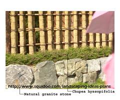stonescape1-2 (rhmn) Tags: pictures stone gardening outdoor landscaping rustic pebble malaysia granite tropical limestone plans ideas gravel rockscape stonescape squidoo riverwash danialieman
