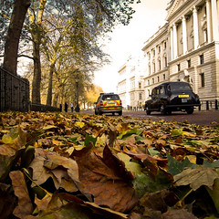 Autumn in London (Jos Mecklenfeld) Tags: autumn england london westminster stjamespark ricoh whitehall gx200