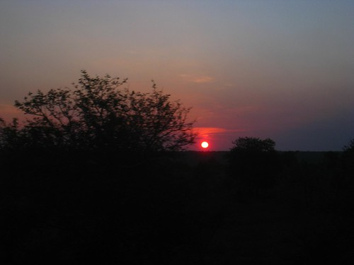Sunrise over Kruger Park