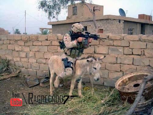 استهبال الجيش الامريكي بالعراق 3082040761_2cc5b67016_o