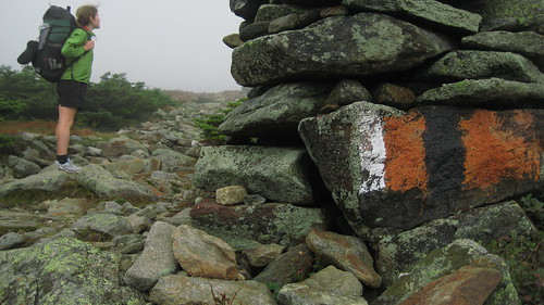 Old D.O.C. Blaze on a Cairn