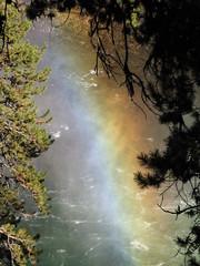 IMG_1192 (glazaro) Tags: park usa west america nationalpark scenery national yellowstonenationalpark yellowstone wyoming wes yellowstonepark