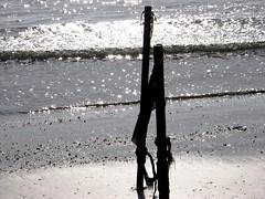 Waiting for the flood (Inatil) Tags: greatshot natureslight kartpostal
