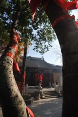 蘇州2008 - 寒山寺(3)