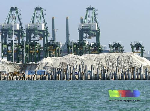 Reclamation at Pasir Panjang port