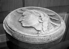 Fraser Buffalo Clay Model