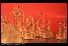King's knight (kamikazengp) Tags: light etched glass canon chess experiment bamboo hues shatranj nandagopalchess